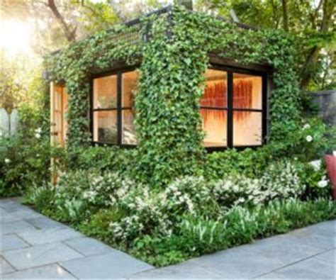 how to get more privacy in backyard how to get some privacy into your backyard 10 modern ideas