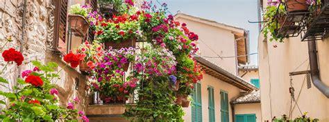 terrazzo in fiore bagnare bene il terrazzo e il balcone cose di casa
