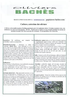 Entretien Des Oliviers by Notre Fiche D Entretien Des Oliviers