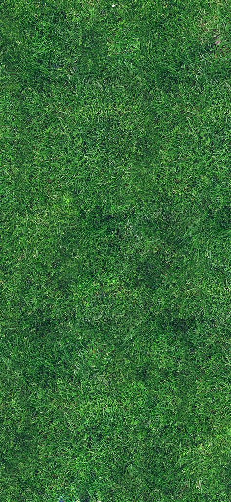 apple wallpaper grass iphonexpapers com apple iphone wallpaper vg56 grass