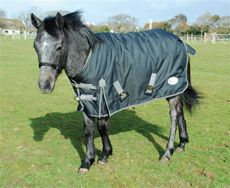 pony turnout rugs rhinegold mediumweight 200g foal small pony turnout rug fast tack direct