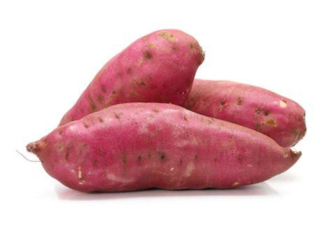 Batatas Keripik Pangsit Ubi Ungu 6 manfaat ubi jalar bagi ibu