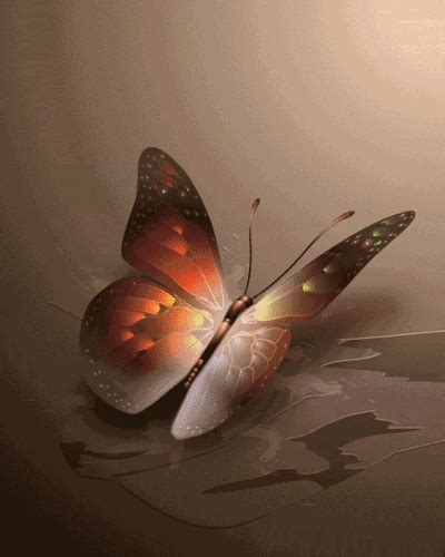 Butterflies Images Beautiful Butterfly Animated Wallpaper Animated Images Of Butterfly