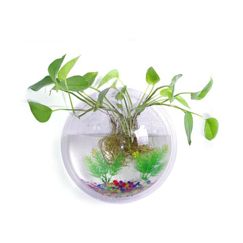 Acrylic Fish Bowl Vase by 23cm Diameter Clear Acrylic Wall Mount Hanging Fish