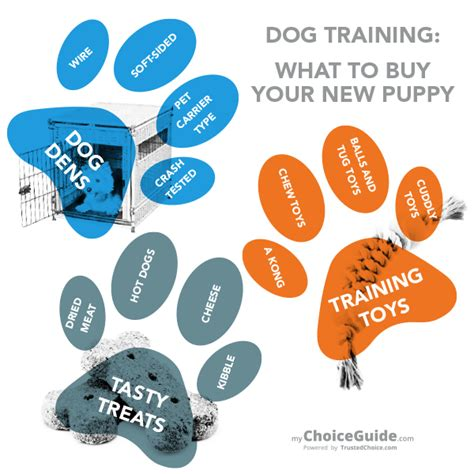 what to buy for a new puppy what to buy for a new puppy trusted choice