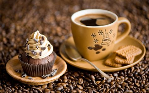 It's National Coffee Day   Where's Your Best Cup of Coffee Come From   Freeport Il News Network
