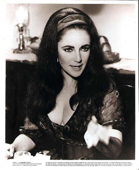 vintage elizabeth taylor vintage elizabeth taylor pictures