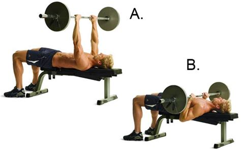 bench press how low the 13 best chest exercises to pummel your pecs and build an iron clad chest lean