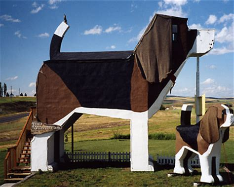 beagle dog house plans beagle dog house plans myideasbedroom com