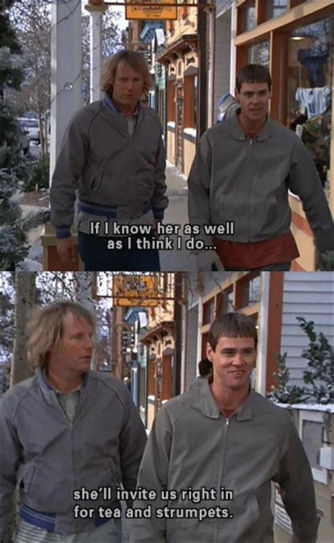 movie quotes dumb and dumber dumb and dumber quotes quotesgram