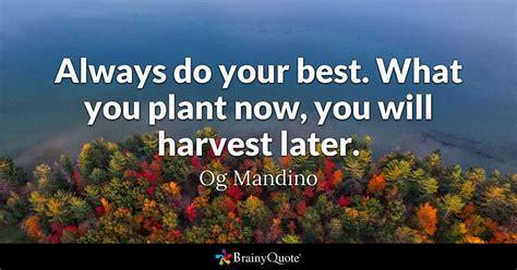 plant    harvest