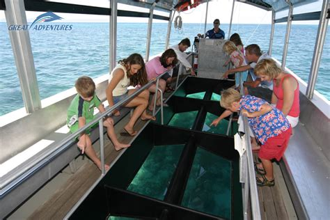 glass bottom boat tours australia green island ferry tours cairns half day reef trip