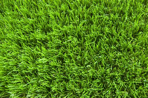 artificial lawns in surrey grass me up