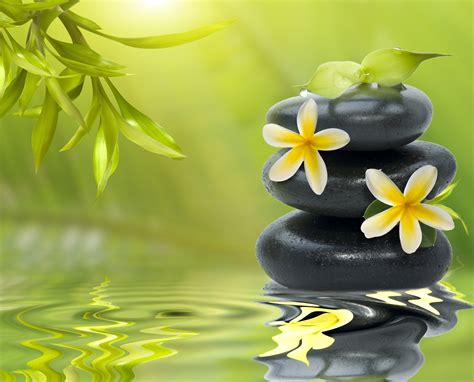 zen images finding zen easy ways to cultivate more inner peace we magazine for women
