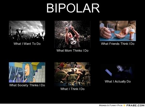 Bi Polar Meme - bipolar meme generator what i do