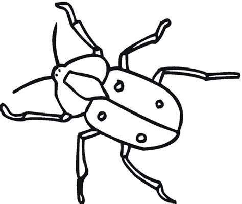 easy bug coloring pages colosseum simple coloring pages