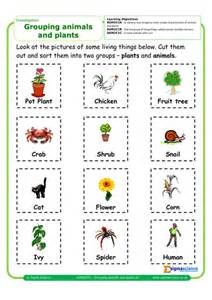 sgm2ci01 grouping animals and plants by sigmascience