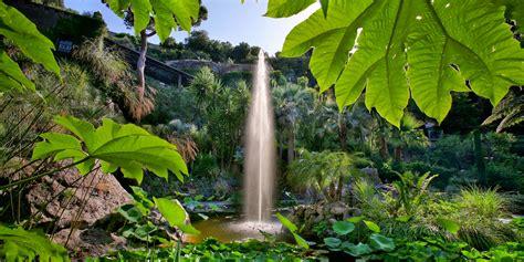 giardino la mortella giardini la mortella fondazione william walton