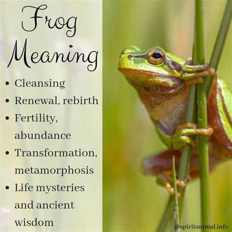 frog spirit animal totem meaning spirit animal totem