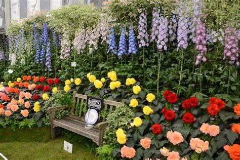 pertunjukan bunga  chelsea flower show london panduan