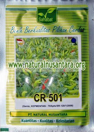 Benih Cabe Multi Warna bibit unggul cabe rawit genie pupuk organik