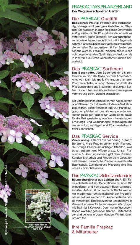 pflanzen garten katalog garten pflanzen katalog lyfa info