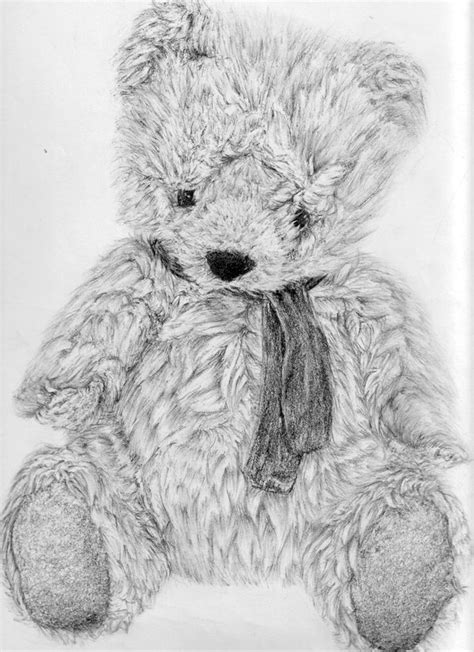 10+ Lovely Teddy Bear Drawings for Inspiration - Hative