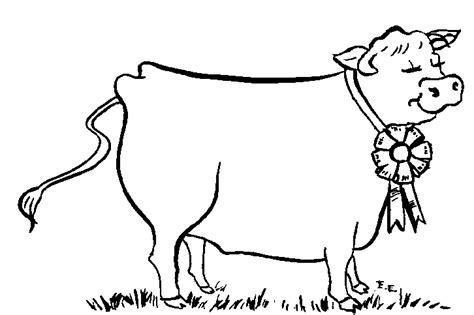 Cow Drawing Outline by Cow Outline