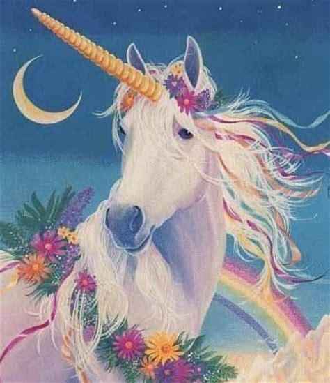 unicorn rainbow unicorns images rainbow wallpaper and background photos