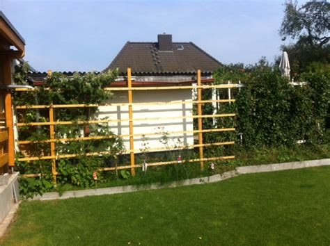 Moderner Sichtschutz Für Den Garten 928 by Rankgitter Aus Holz Selber Bauen Bvrao