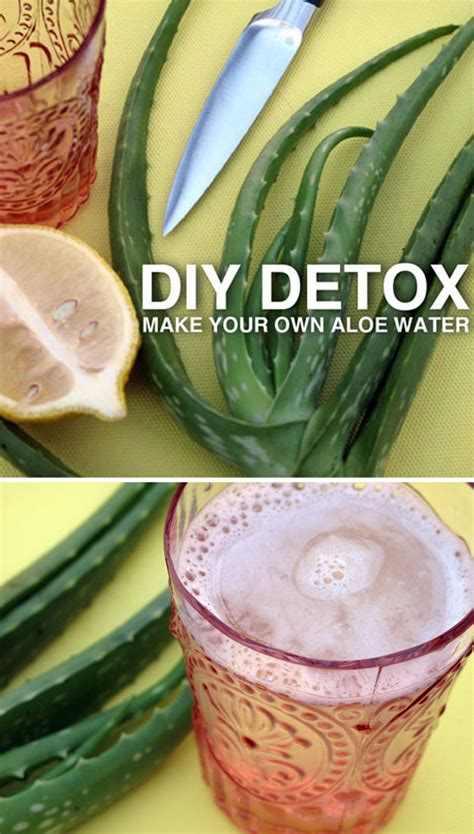 Diy Detox by 31 Diy Detox Water Recipes Drinks To Start 2016