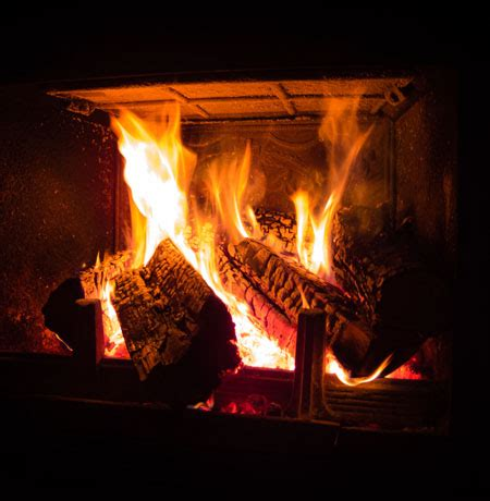 Burning Unseasoned Wood In Fireplace by Best Hardwoods Softwoods Wood To Burn In Fireplace