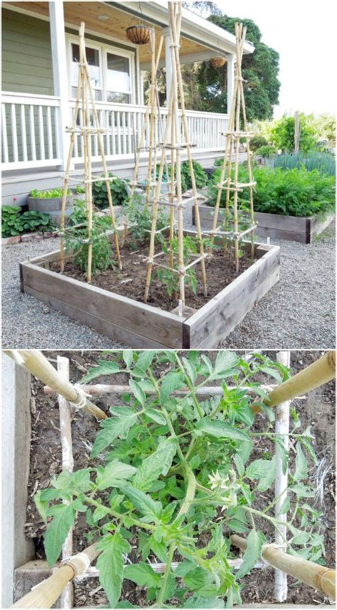 great diy garden plant supports  ideas