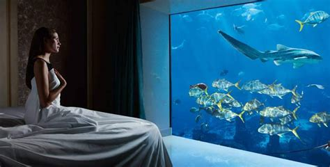 atlantis bahamas underwater rooms dubai s most expensive hotel room costs rs 13 lakh gq india live well travel