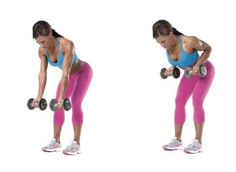 bench over row top 5 dumbbells only exercises for a stronger back