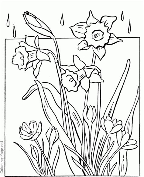 spring coloring pages for adults coloring home