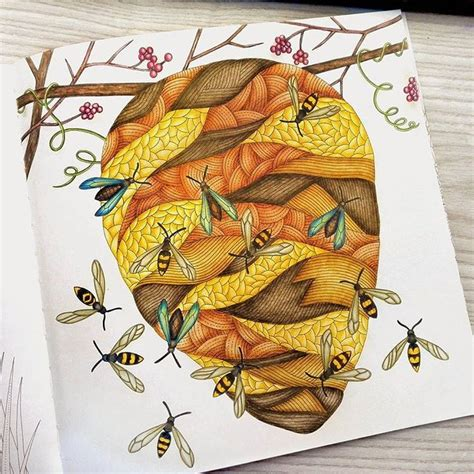 libro millie marottas wild savannah mejores 49 im 225 genes de wild savannah millie marotta en coloraci 243 n adulta libros