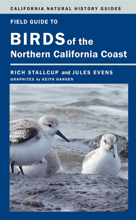 field guide california birds information field guide to birds of the northern california coast rich stallcup jules evens paperback