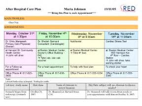 Hospital Care Plan Template by Project Reengineering The Hospital Discharge Process