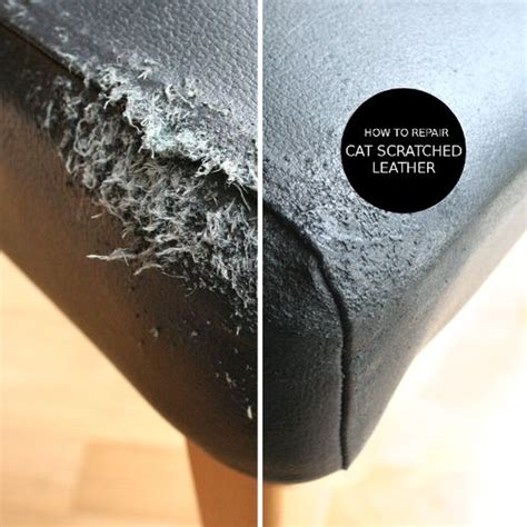How To Repair Scratched Leather Sofa How To Repair Cat Scratched Leather In Two Steps Yes Diy Or Die Cats Leather