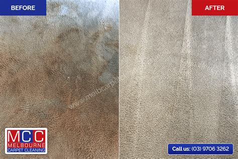 carpet and upholstery cleaning melbourne carpet cleaning and steam cleaning melbourne mcc