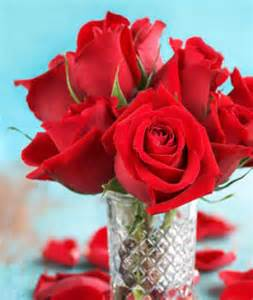 how long do flowers last roses for all seasons learn how to preserve your flower