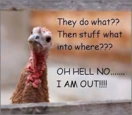 happy thanksgiving pic funny funny thanksgiving joke pictures photos and images for
