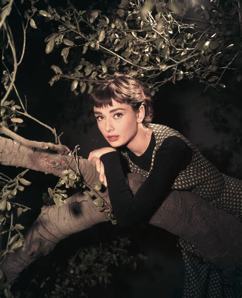 photographer biography movie 6 lesser known facts about audrey hepburn biography com