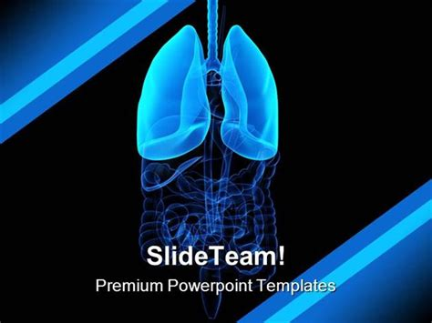 powerpoint themes lungs human lung science powerpoint templates and powerpoint