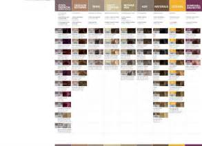 redken shades color chart redken shades eq color chart www pixshark images