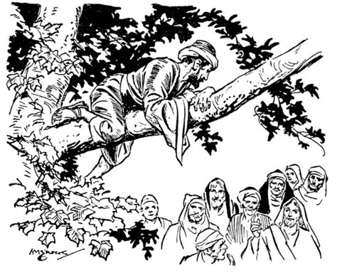 coloring pages zacchaeus tree zacchaeus the tax collector learn to coloring