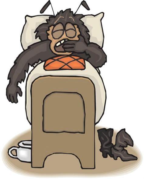 Woher Kommen Bettwanzen by Wanzenbisse Folgen Und Gegenma 223 Nahmen