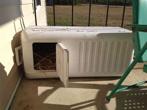 outdoor insulated dog house best 25 insulated cat house ideas on pinterest