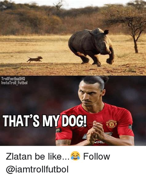 Url Meme - troll footballhq instatroll futbol that s my dog url